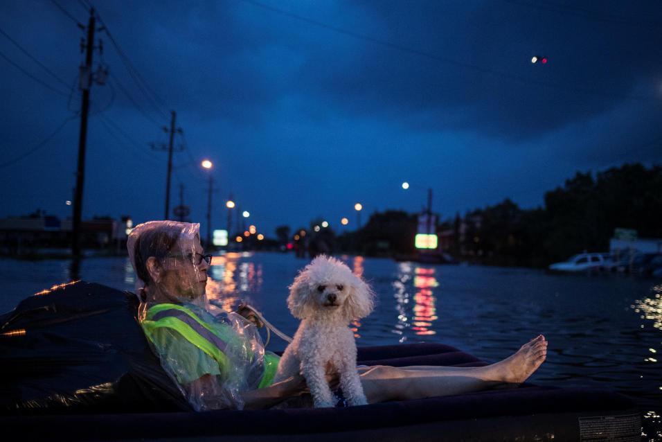 Fotografías de Houston después de la inundación