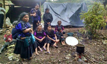 Viven en la intemperie por conflictos territoriales en Chiapas.