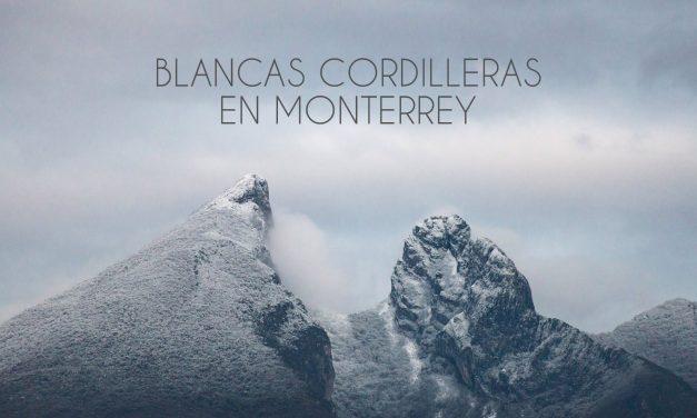 MONTERREY Y SU ÁREA METROPOLITANA SE CUBRE DE NIEVE.