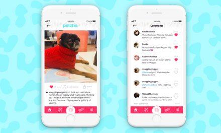 Petzbe, el nuevo Instagram para perros y gatos