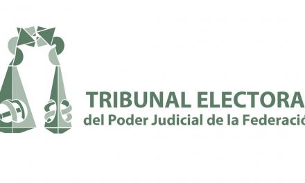 Tribunal Electoral determina al INE no aceptar fotocopias.