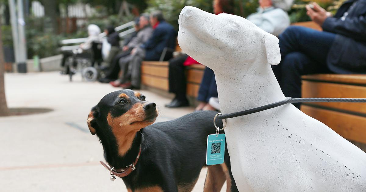 Así promueven la adopción de animales en Barcelona