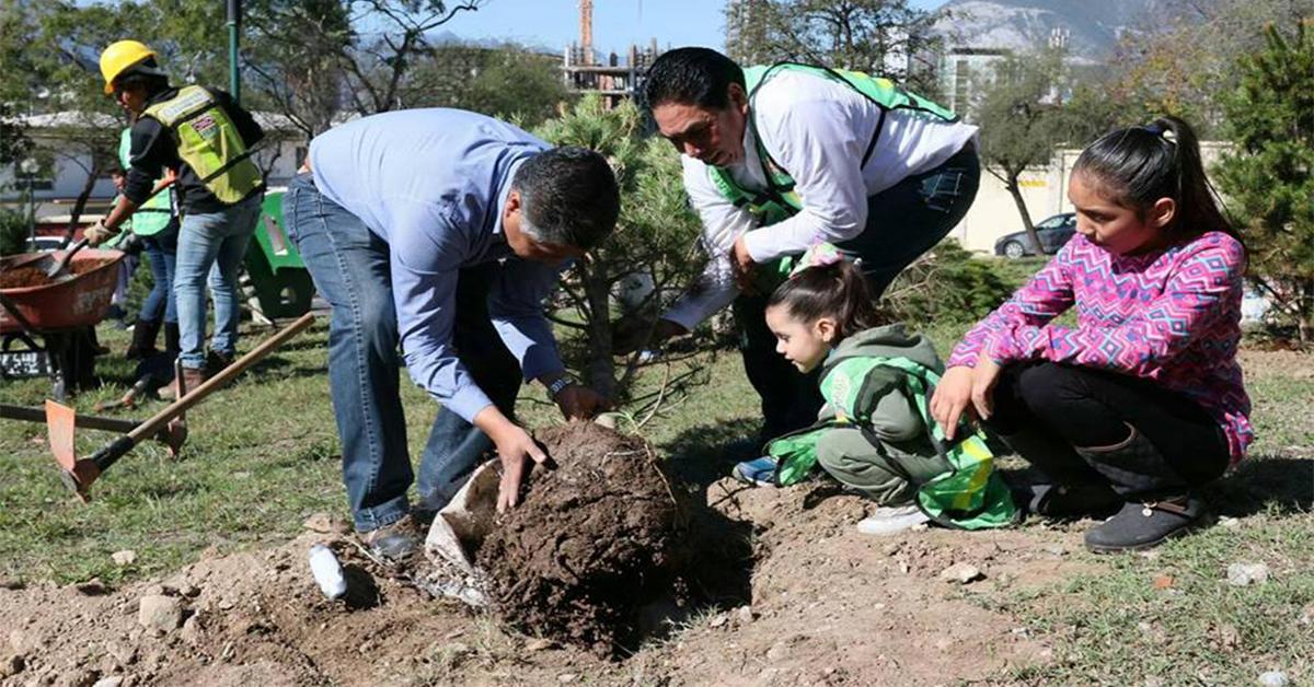 Reforestación Extrema AC, siembran pinos en plaza pública de Monterrey