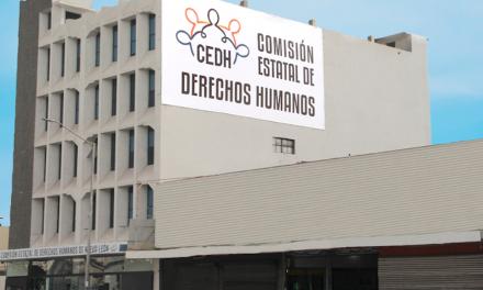 Pide CEDH no aprobar dictamen contra aborto