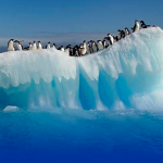 Se derrite Groenlandia; se enfrentan a 17.3º