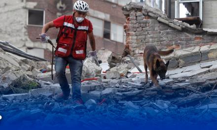 Muere 'Chichí' perro rescatista