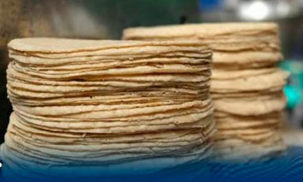 18 pesos el kilo de tortilla en Nuevo León golpe a la economía