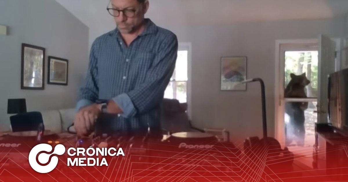 Se hace viral Oso que interrumpe transmisión en vivo de DJ