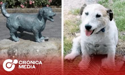 Levantan estatua en homenaje a perrito que salvó a niños del ataque de un pitbull.
