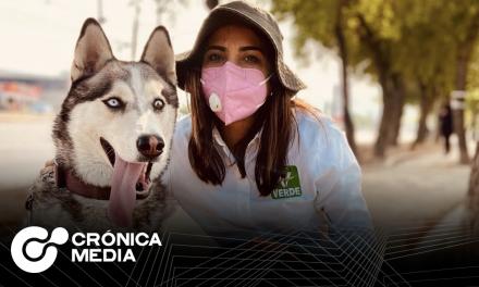 Ivonne Bustos creará hospital veterinario público en Santa Catarina