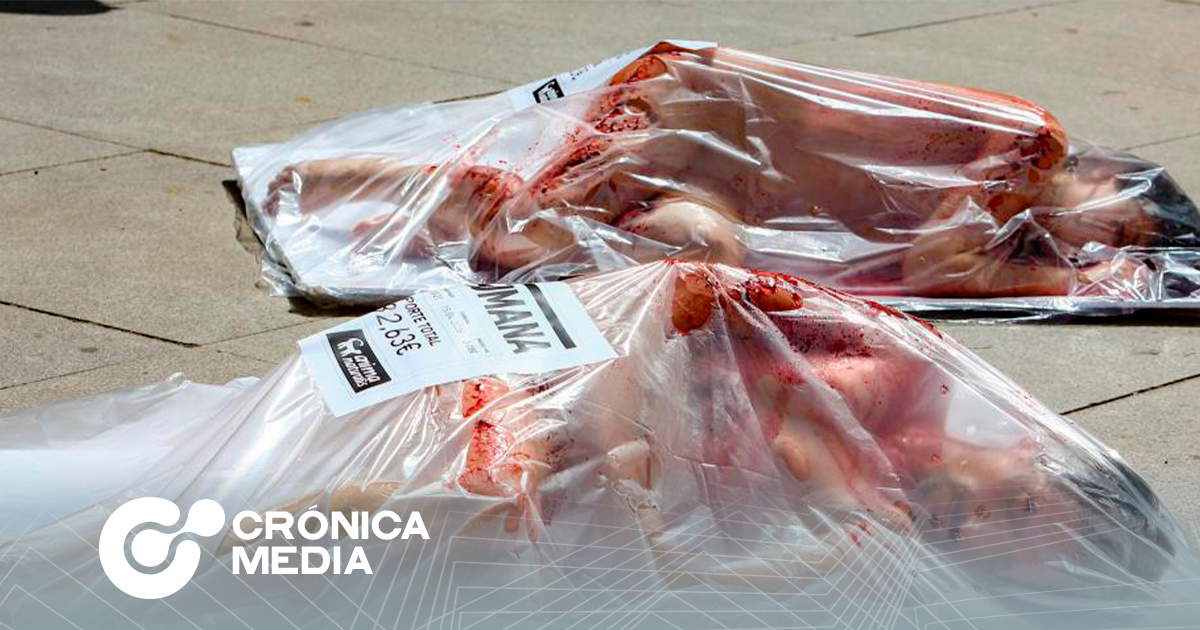 Activistas protestan en contra de consumo masivo de carne